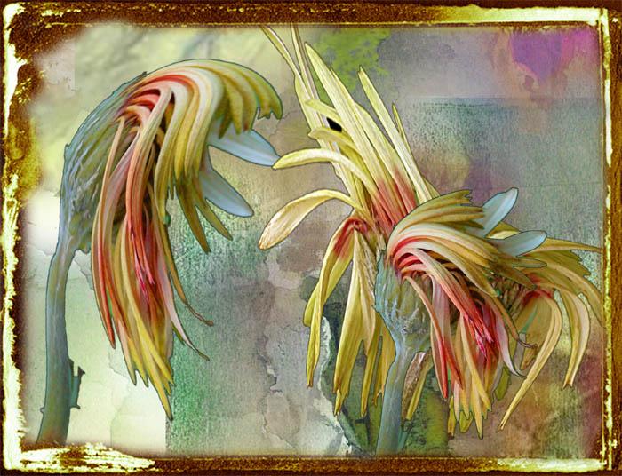 Blüten- Tanz
