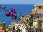 Blüten über dem Mittelmeer