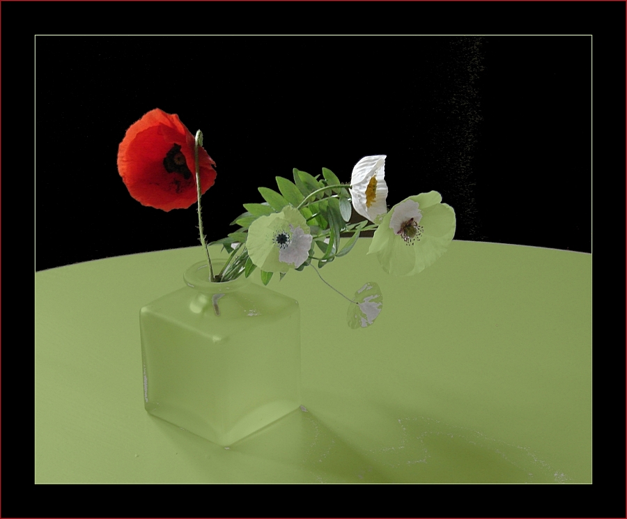 Blüten, Vase, Tisch