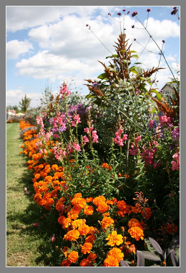 Blütenband in VS