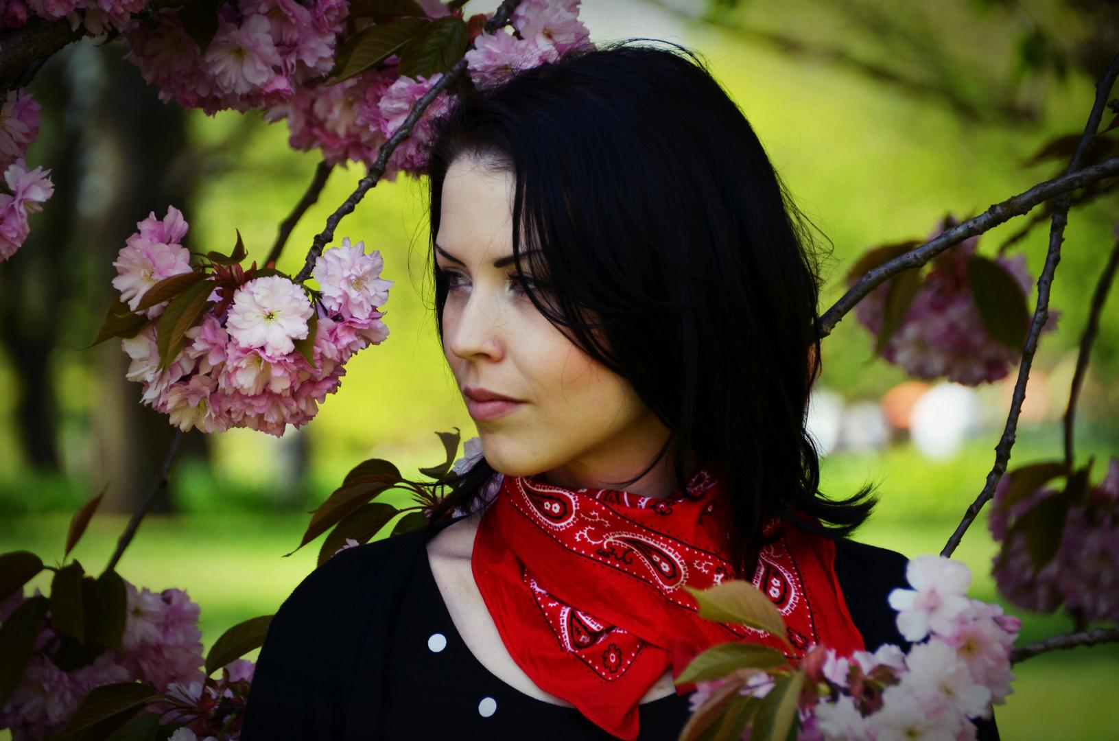 Blütenfest...