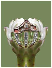 Blütenhaus