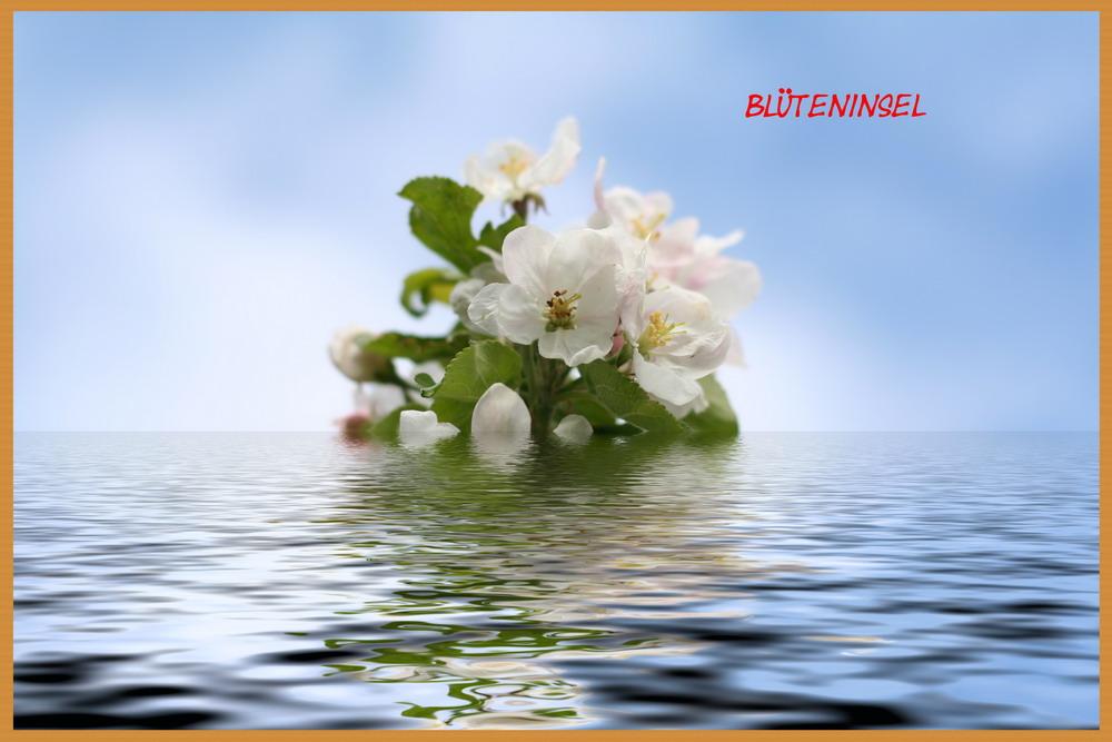Blüteninsel