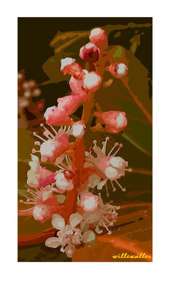 Blütenkerze