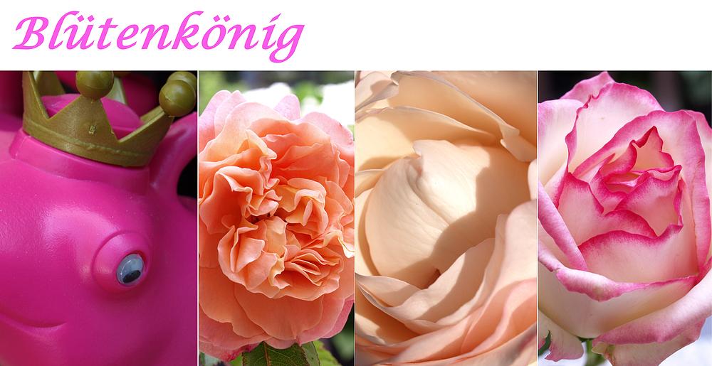 Blütenkönig