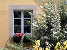 Blütenpracht vor dem Fenster