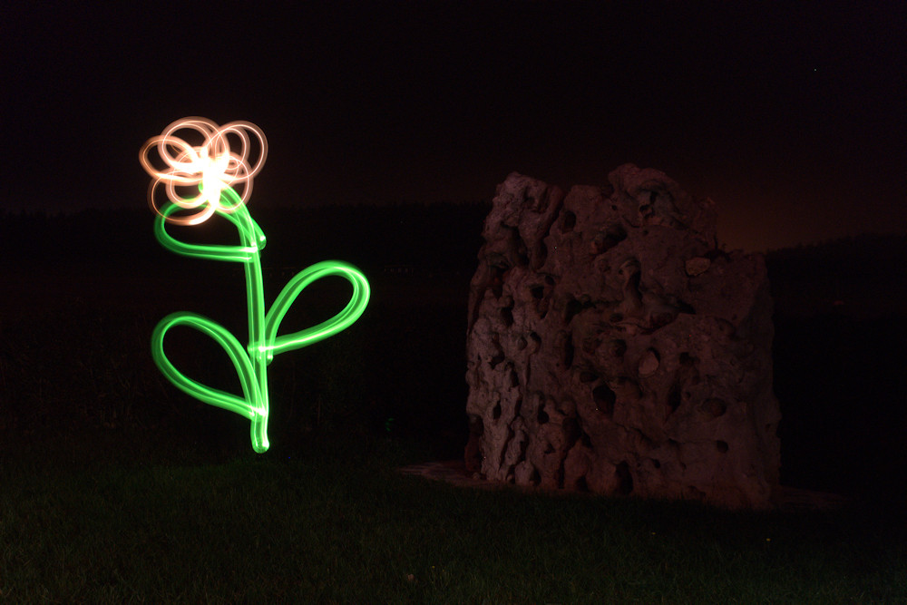 Blume aus Licht