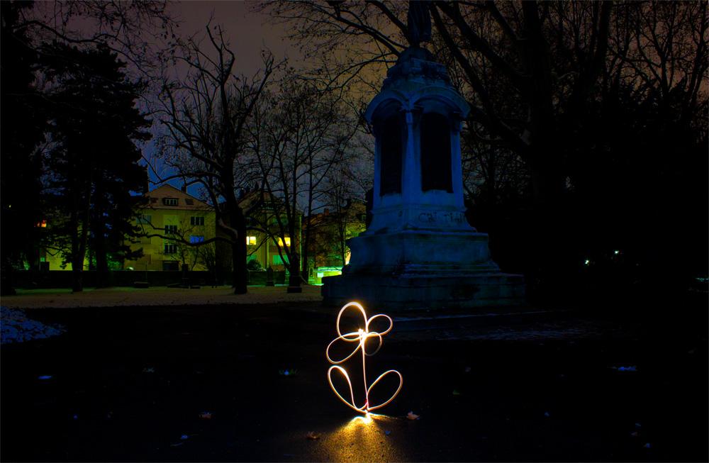 Blume bei Nacht