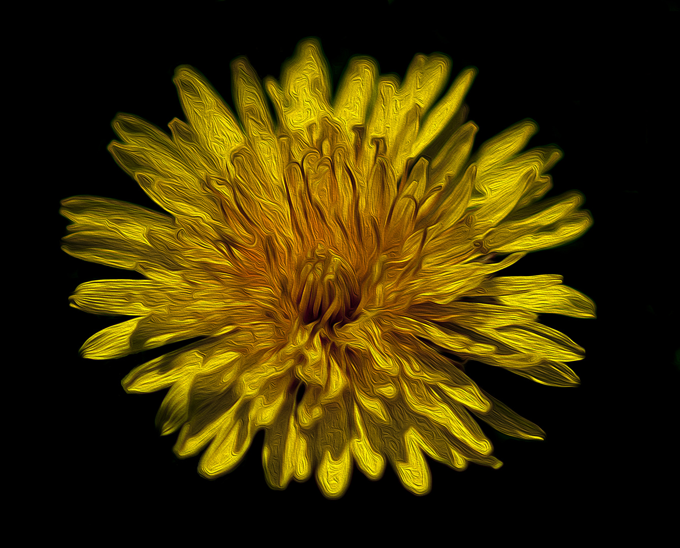 Blume in Ölfarbe