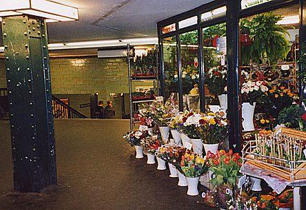 Blumen am Alex
