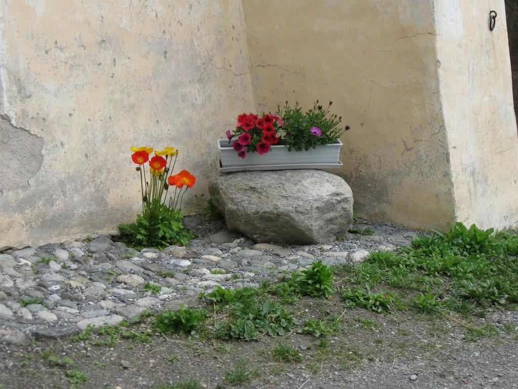 Blumen an Engadiner Haus