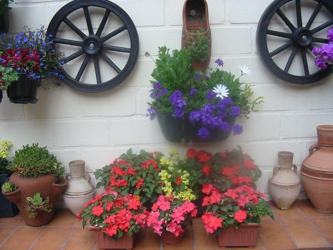 Blumen an Mauer
