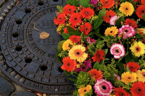 Blumen auf Kanalisation