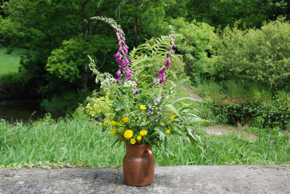 Blumen aus dem Garten der Natur