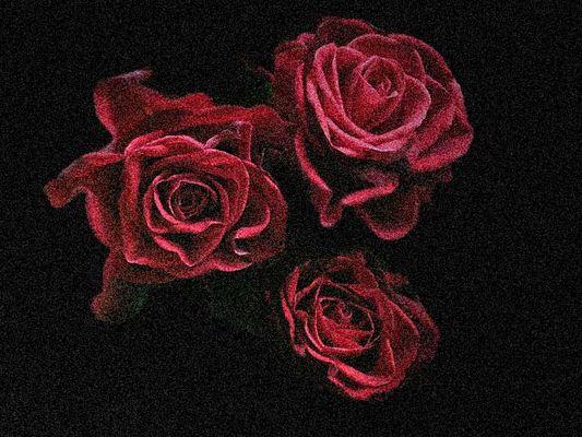 Blumen für dich ...