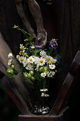 Blumen für Jesus