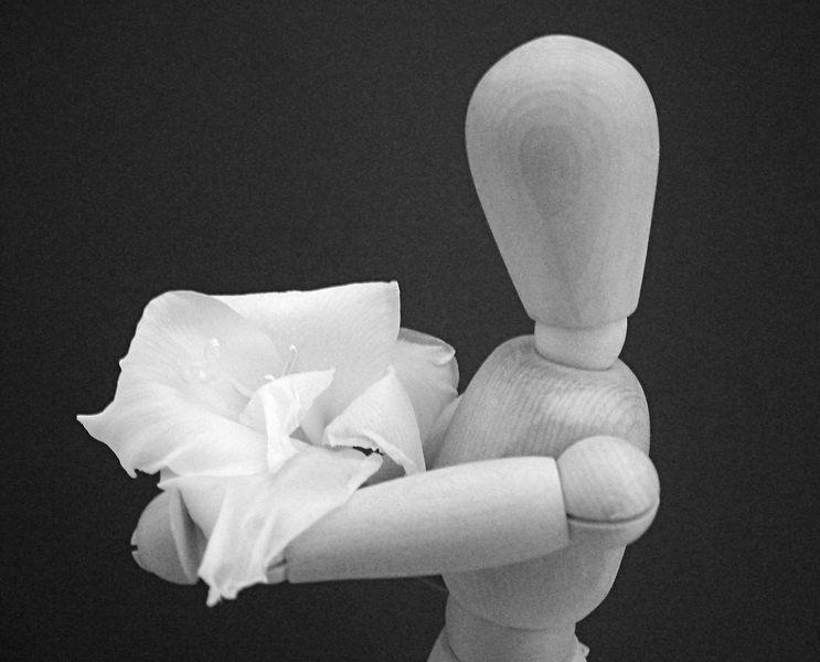 Blumen-Liebhaber