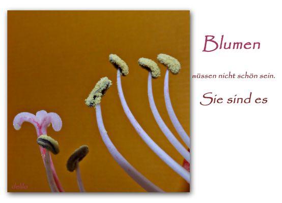 Blumen müssen nicht schön sein....