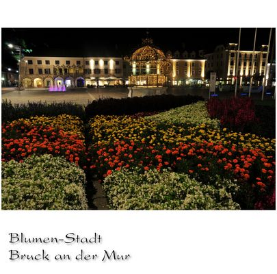 Blumen Stadt