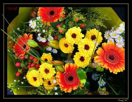 Blumen Strauss