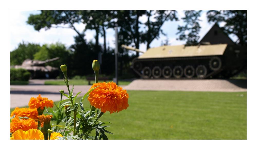 Blumen und Panzer