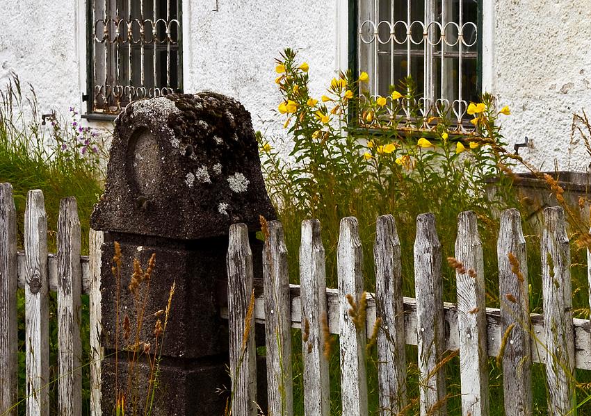 Blumen vor dem Fenster.