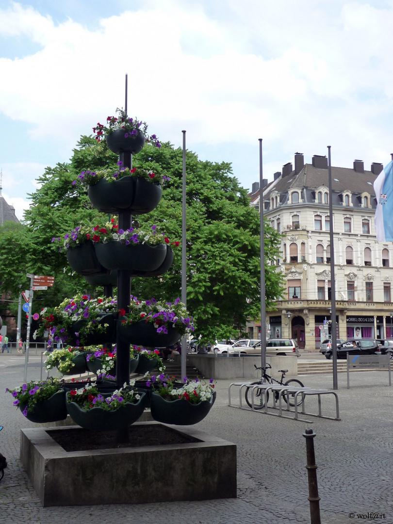 Blumenarrangement vorm Rathaus in Saarbrücken
