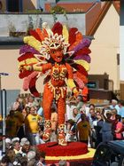 Blumenfest 2008 in Röthenbach an der Pegnitz
