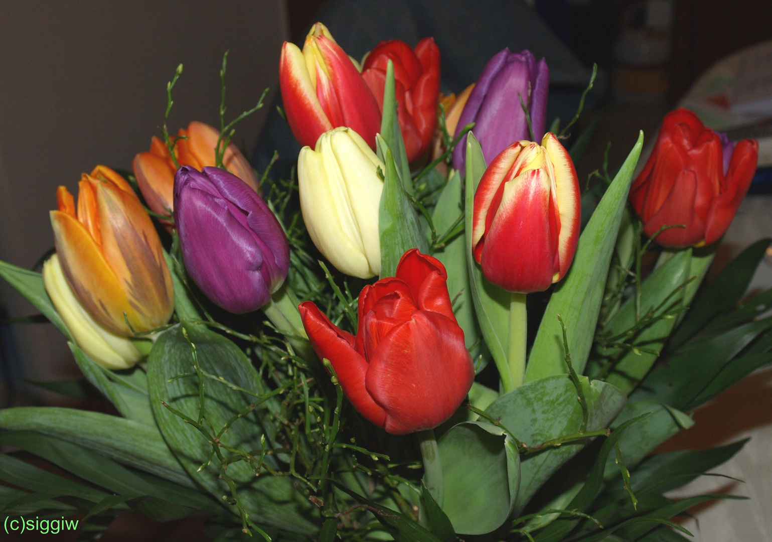 Blumengruß zum Rosenmontag