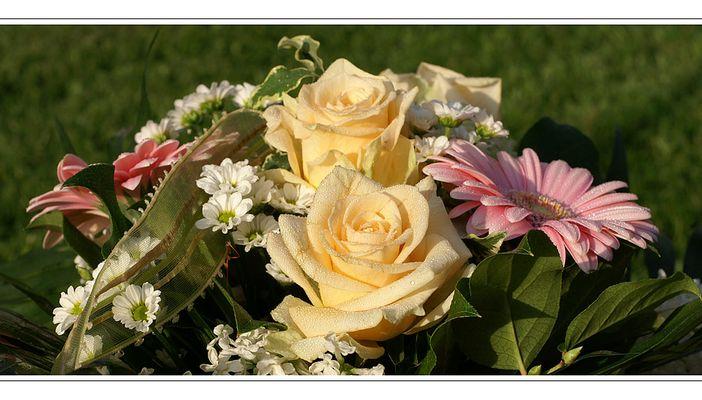Blumengruß zum Valentinstag (2)