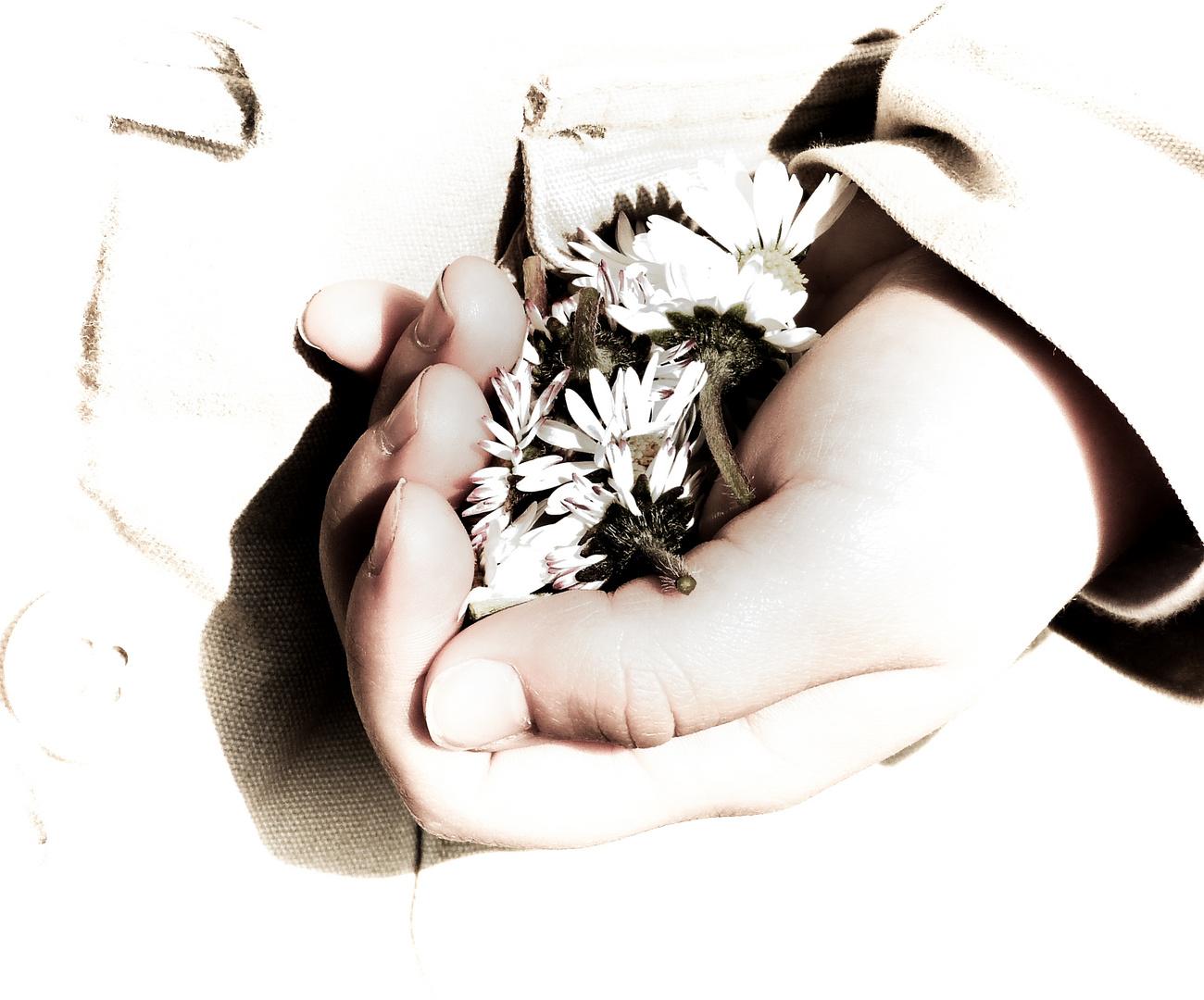 Blumenhand