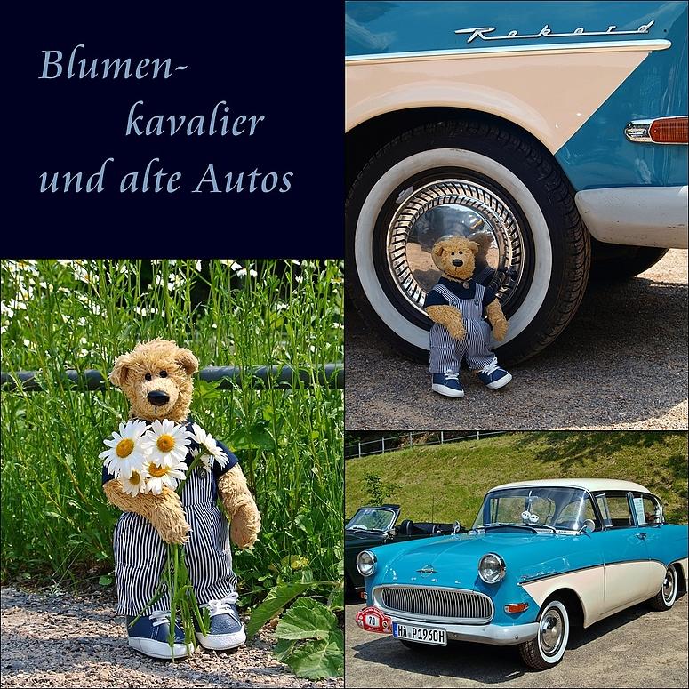 Blumenkavalier und alte Autos