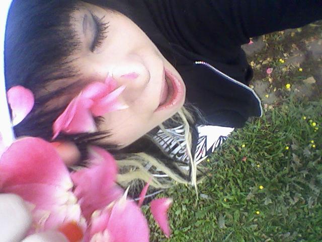 Blumenmeer.