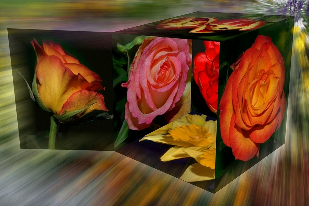 Blumenpaket