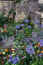 Blumenpracht im Hidcote manor Garden-2-