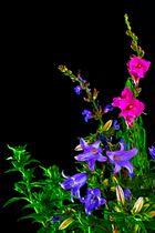 Blumenstauß-Studie