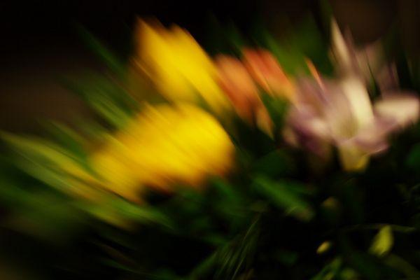 Blumenstrauß mal anders
