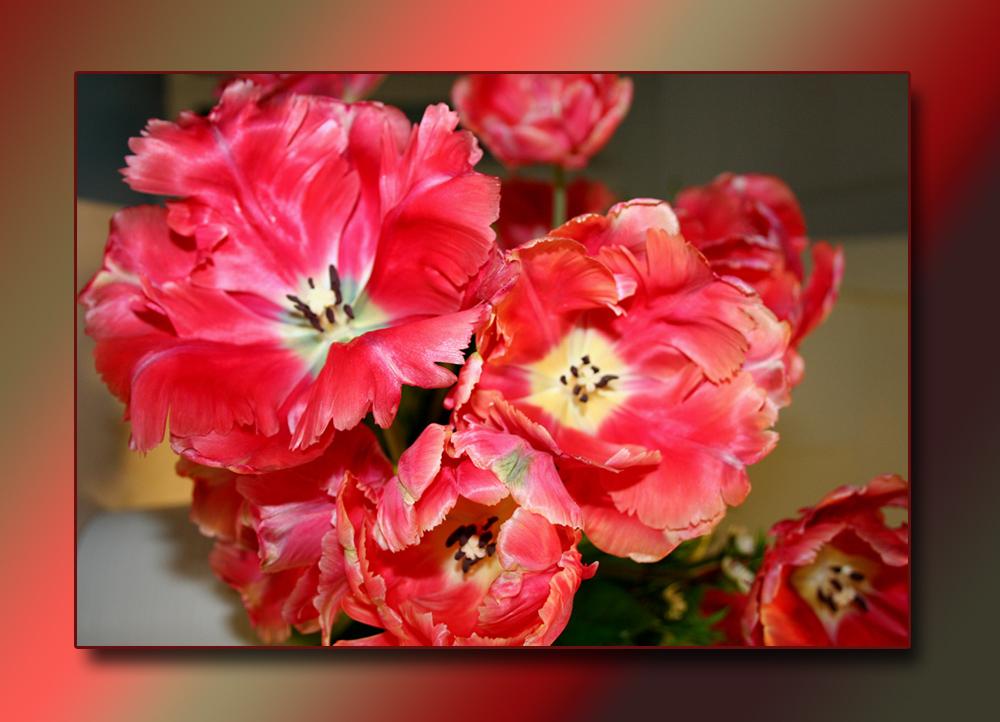 Blumenstrauss zum Sonntag