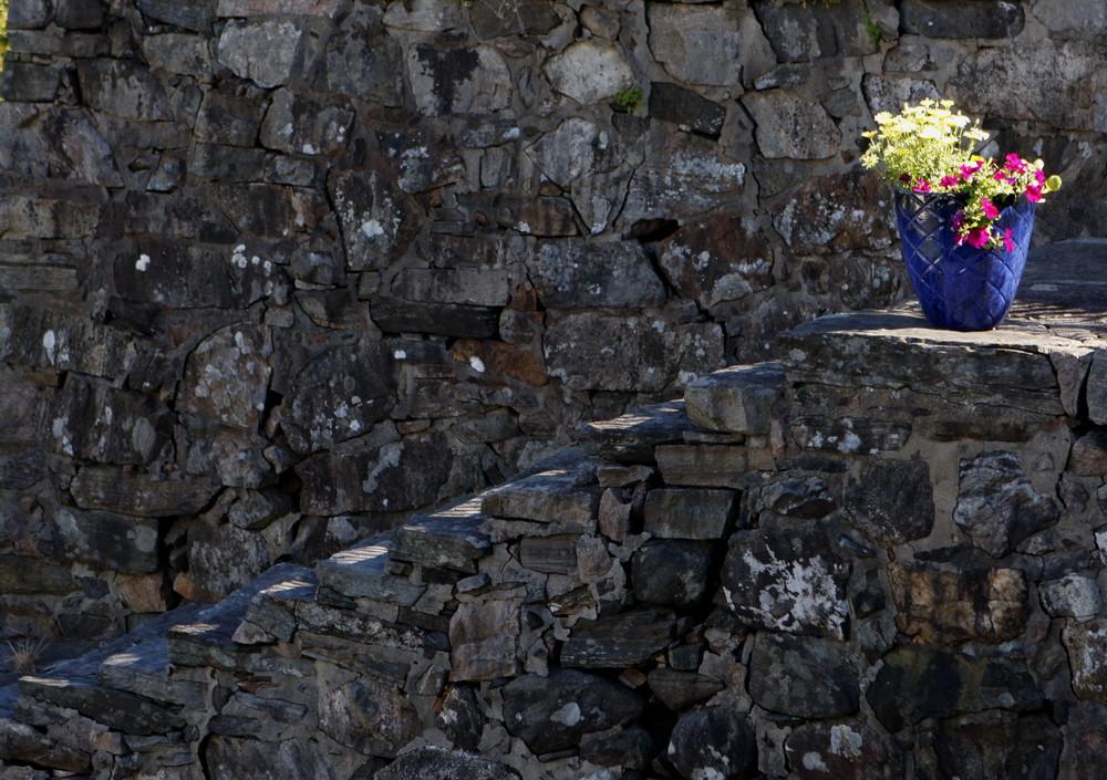 Blumentopf mit Treppe