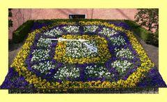Blumenuhr in Zittau - Frühjahr