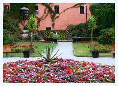 Blumenuhr Zittau 2007 - 100 Jahre