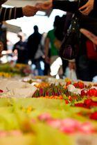 Blumenverkäufer auf dem Naschmarkt