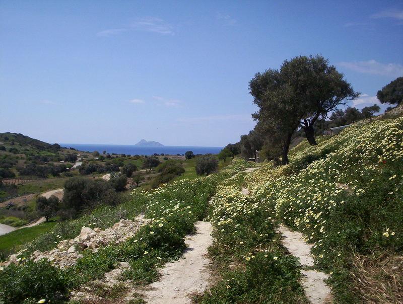 Blumenwiese auf Kreta