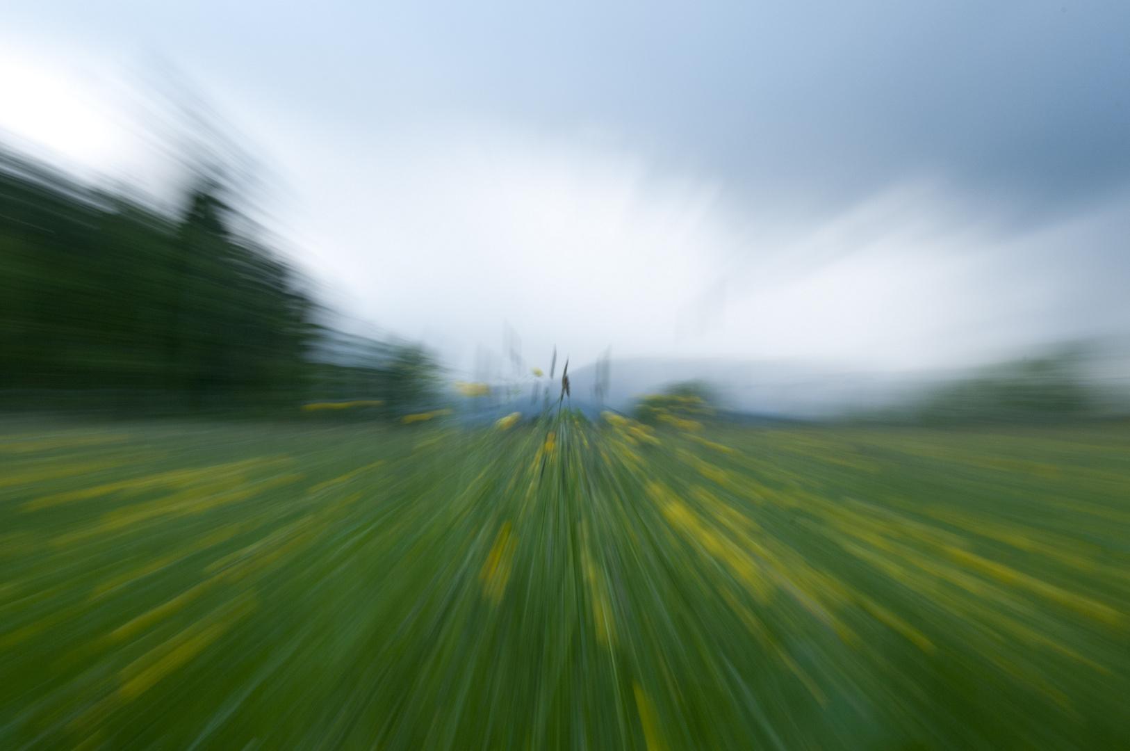 Blumenwiese mit Gewitterwolken im Hintergrund mal anders