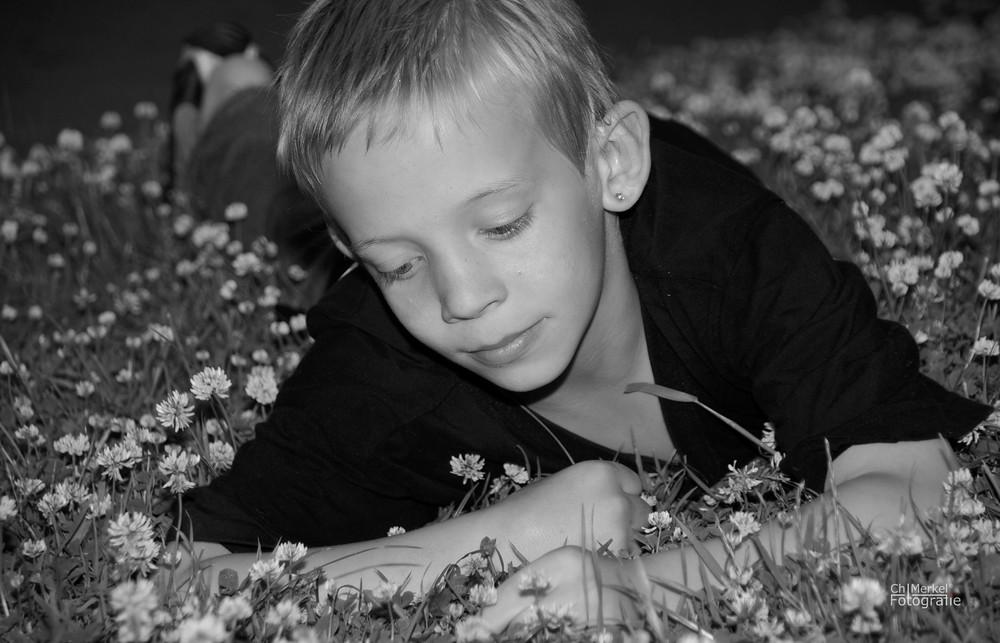Blumenzähler