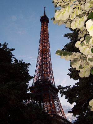 Blumiger Eiffelturm