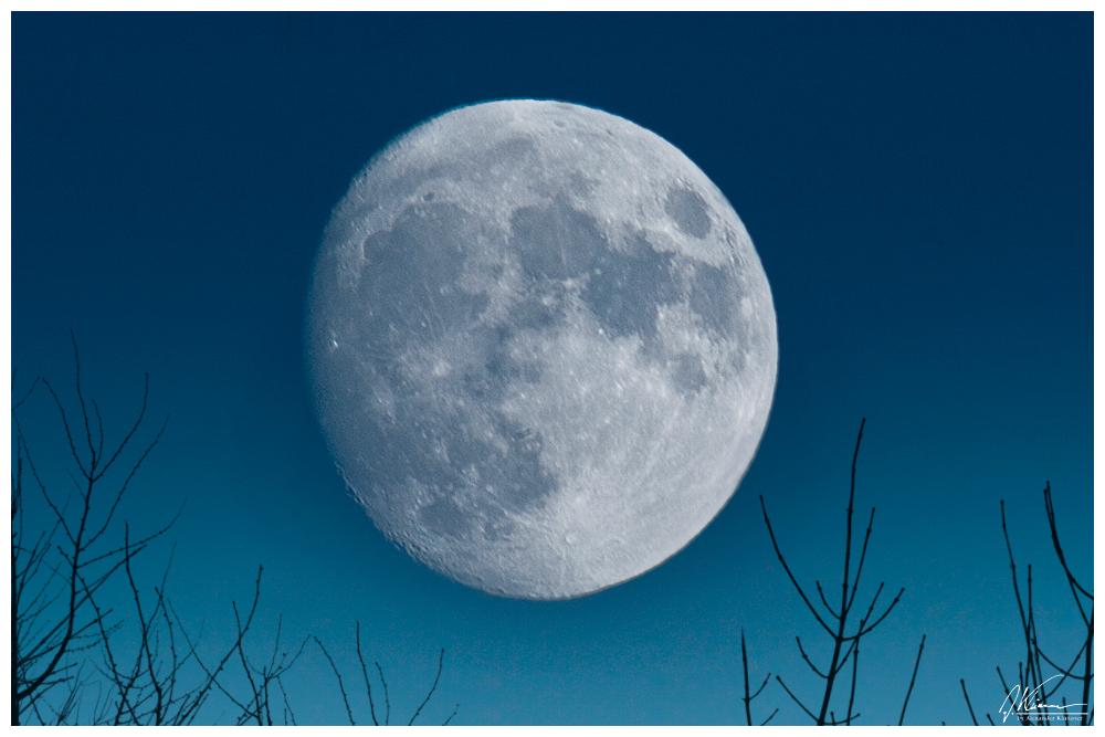 blu:moon