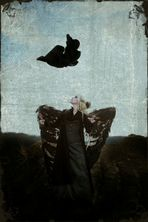 blutig die Flügel, doch frei die Seele