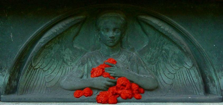 Blutrote Rosen