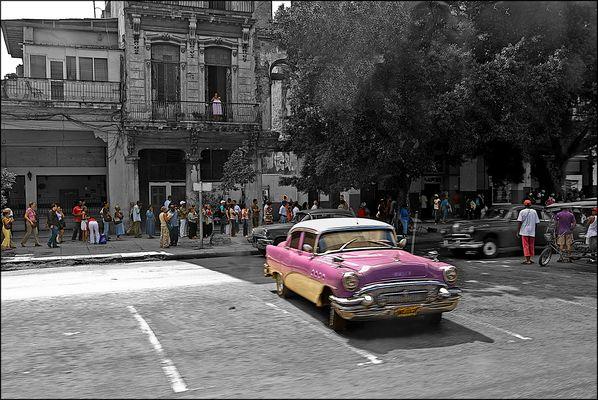 B&N y Color Habana